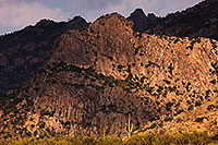 /images/133/2017-07-12-catalina-mtns-5dsr_0014.jpg - #13940: Santa Catalina Mountains … July 2017 -- Santa Catalina Mountains, Arizona