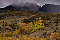 /images/133/2017-09-27-mclure-pass-im100-a7r2_3773.jpg - #14080: Fall colors at McClure Pass, Colorado … September 2017 -- McClure Pass, Colorado