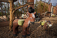 /images/133/2018-03-24-gv-donkeys-mi50-a7r3_00205.jpg - #14228: Donkey in Green Valley, Arizona … March 2018 -- Green Valley, Arizona