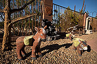 /images/133/2018-04-03-backyard-donkeys-m10_054.jpg - #14247: Donkeys in Green Valley, Arizona … April 2018 -- Green Valley, Arizona