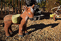/images/133/2018-04-03-backyard-donkeys-m10_065.jpg - #14248: Donkeys in Green Valley, Arizona … April 2018 -- Green Valley, Arizona