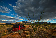 /images/133/2018-04-27-st-ritas-viv77-a7r3_1565.jpg - #14301: Xterra by Santa Rita Mountains, Arizona … April 2018 -- Santa Rita Mountains, Arizona