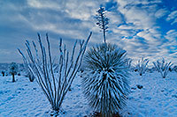 /images/133/2019-01-02-st-rita-ie1-4to8-a7r3_5213.jpg - #14528: Snow on Santa Rita Mountains … January 2019 -- Santa Rita Mountains, Arizona