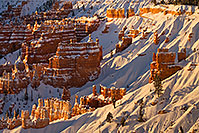 /images/133/2019-01-19-bryce-morn-im6-a7r3_10608.jpg - #14565: Snowy morning at Bryce Canyon … January 2019 -- Bryce Canyon, Utah