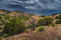 /images/133/2020-08-13-box-hillls-3to7n88-a7r3_30662.jpg - #14824: Evening in high desert of Box Canyon … August 2020 -- Box Canyon, Arizona