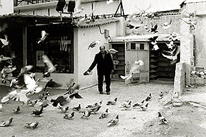 The man who owned pigeons in Athens …
