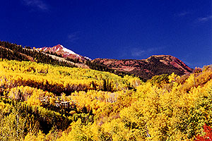 Fall colors in Snowmass Village