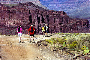 People approaching Plateau which overlooks Colorado River