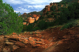 Dogie Trail in Sycamore Canyon
