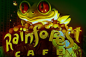 Frog statue of Rainforest Café in dowtown Chicago