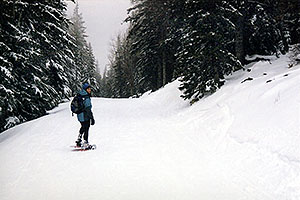 Snowshoer at Snowbowl