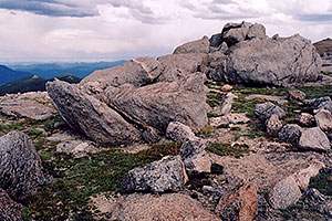 rocky meadows of Mt Evans