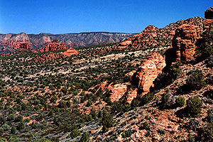 view of Sycamore Canyon in Sedona
