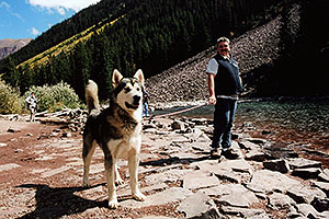 Junior (Alaskan Malamute) at Maroon Lake (he is 11 months old)
