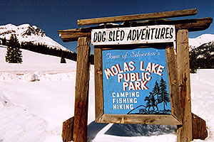 Dogsled Adventures at Molas Pass