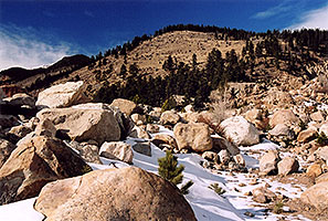 Rocky Mtn National park, near Estes Park