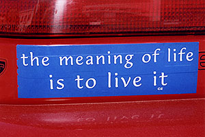 The meaning of Life is to Live it … images of Divide