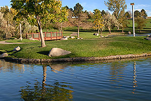 Meridian pond in Lone Tree
