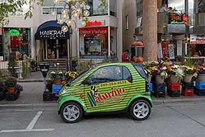 Smart Car by Mercedes Benz - available in Canada, not yet USA - http://www.msnbc.msn.com/id/5217861/