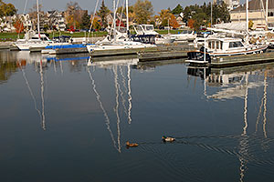 images of Oakville