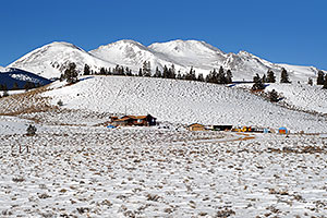 houses south of Leadville, in neighborhood of Mt Elbert