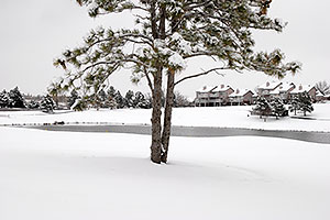 images of Lone Tree Golf Course