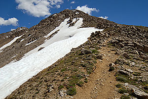 View up at 13,000 ft along La Plata Peak trail