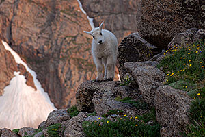 images of Mt Evans