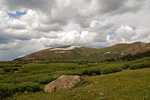 Along the trail of Mt Bierstadt