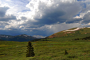 Meadow along the trail to Mt Bierstadt