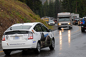 Yellowstone National Park car and traffic -- cars stopped and watching moose below the road