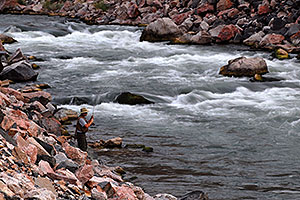 Fly fisherman at Wind River