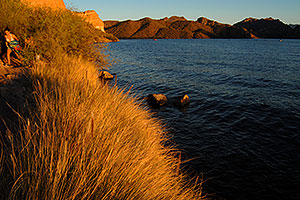 Evening at Saguaro Lake