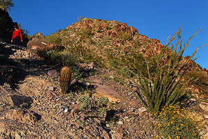 Hikers at Squaw Peak Mountain in Phoenix