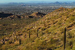 View North at Phoenix from South Mountain