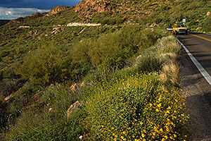 Apache Trail in Superstitions