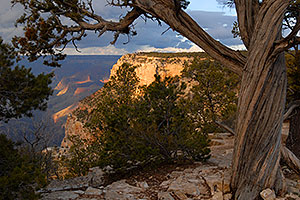 View from the Grand Canyon South Rim, near Bright Angel Trail