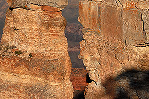 Face rock formation at Yaki Point near South Kaibab Trail in Grand Canyon