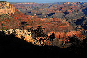 View from Mather Point in Grand Canyon