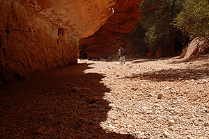 Hikers along Havasupai Trail, in flash flood area of Havasu Canyon