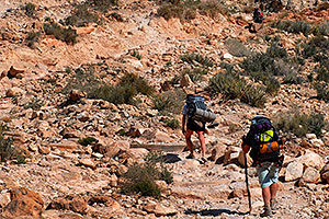 Hikers along Havasupai Trail near Hualapai Hilltop, in the last mile of uphill and switchbacks
