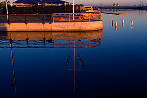 Late afternoon by Tempe Town Lake Marina