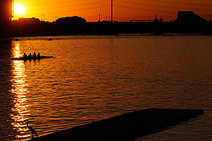Scullers and Great Blue Heron at North Bank Boat Ramp at sunset at Tempe Town Lake