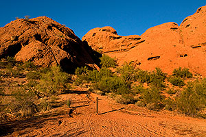 Buttes of Papago Park