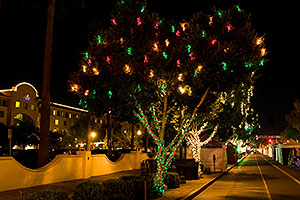 Christmas lights along Mill Road in Tempe - view South