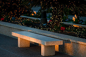 Bench by Mesa Arizona Temple