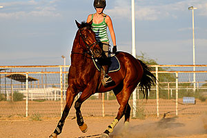Horseback riding in Queen Creek
