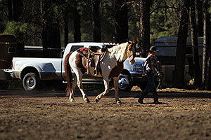 Morning at NAHA Horseback riding event in Flagstaff