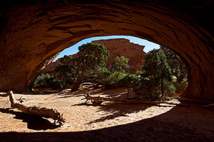 Navajo Arch in Arches National Park