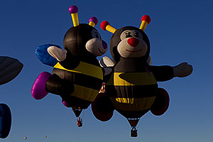 Lilly and Joey Bees at Balloon Fiesta in Albuquerque, New Mexico